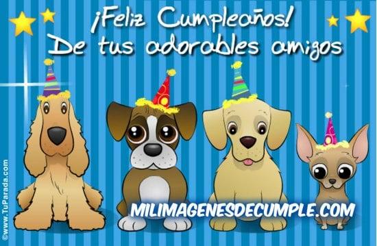 feliz cumpleaños de tus adorables amigos